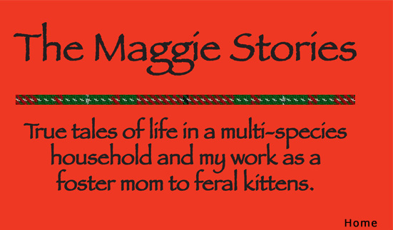 The Maggie Stories